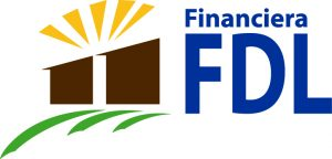 Logotipo NUEVO FDL
